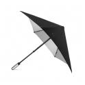 Parapluie DS